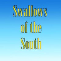Swallows of the South - RPG Casts | RPG Podcasts | Tabletop RPG Podcasts